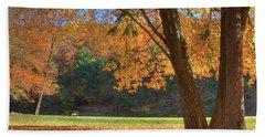 Beach Sheet featuring the photograph Autumn At Lykens Glen by Lori Deiter