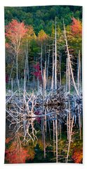 Autumn At Moosehead Bog Beach Towel