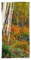 Autumn Birch Beach Sheet