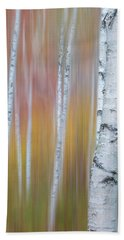Autumn Birch Impressions Beach Towel
