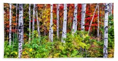 Beach Towel featuring the painting Autumn Birches by Christopher Arndt