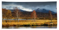 Autumn Birches Beach Sheet