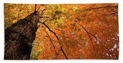 Autumn Canopy In Maine Beach Sheet