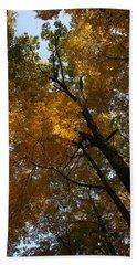 Beach Sheet featuring the photograph Autumn Canopy by Shari Jardina