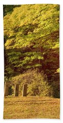 Beach Towel featuring the photograph Autumn Cemetery by Tom Singleton
