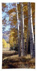 Autumn Chama New Mexico Beach Towel