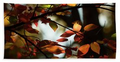 Autumn Changing Beach Sheet by Mike Eingle