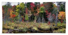 Beach Towel featuring the photograph Autumn Color In The Adirondacks by David Patterson