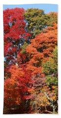 Autumn Color Spray Beach Towel