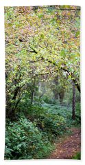 Autumn Colors In The Forest Beach Towel