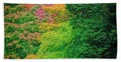 Autumn Colors On Acer Tree Leafs Beach Towel