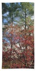 Autumn Day Beach Sheet