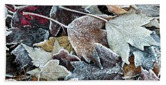 Beach Sheet featuring the photograph Autumn Ends, Winter Begins 1 by Linda Lees