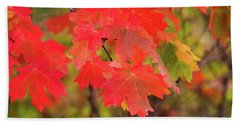 Beach Towel featuring the photograph Autumn Flash by Bryan Carter