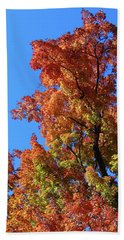 Autumn Foliage Beach Sheet