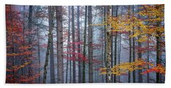 Beach Towel featuring the photograph Autumn Forest In Fog by Elena Elisseeva