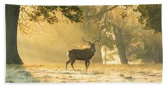 Beach Towel featuring the photograph Autumn Frost by Scott Carruthers
