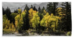 Beach Towel featuring the photograph Autumn Glow by Colleen Coccia