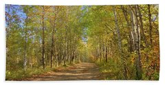 Autumn Hike Beach Sheet by Jim Sauchyn