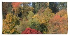 Beach Towel featuring the photograph Autumn In Baden Baden by Travel Pics
