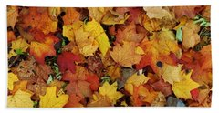 Autumn In Canada Beach Towel by Reb Frost