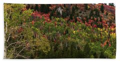 Beach Towel featuring the photograph Autumn In Idaho by Yeates Photography