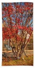 Autumn In Maryland Beach Towel