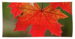 Autumn In Oregon Beach Sheet by Nick Boren