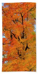 Beach Towel featuring the photograph Autumn In Southern Ontario by Gary Hall