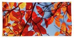 Autumn In The Arboretum Beach Sheet