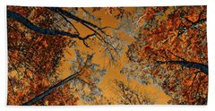 Autumn In The Forest Beach Sheet