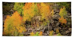 Autumn In The Uinta Mountains Beach Sheet