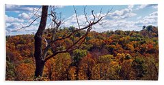 Beach Towel featuring the photograph Autumn In West Virginia by Mike Murdock