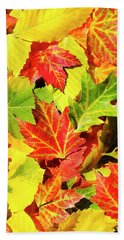 Beach Towel featuring the photograph Autumn Leaves by Christina Rollo