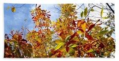 Autumn Leaves In Bellingham Beach Towel by Karen Molenaar Terrell