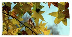 Beach Towel featuring the photograph Autumn Leaves by Joanne Coyle