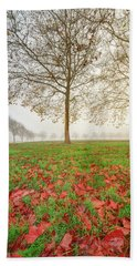 Beach Towel featuring the photograph Autumn Leaves Near To Far Super High Resolution by William Lee