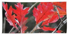 Beach Towel featuring the photograph Autumn Leaves by Peggy Hughes