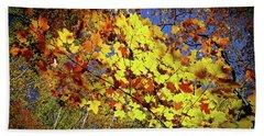 Autumn Light Beach Sheet by Tatsuya Atarashi