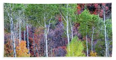 Beach Towel featuring the photograph Autumn Mix by Bryan Carter
