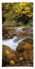 Beach Towel featuring the photograph Autumn Moment by Mike Dawson