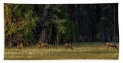 Beach Towel featuring the photograph Autumn Morning In The Meadow by Yeates Photography