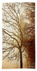Autumn Morning Beach Towel by Stephanie Frey