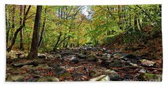 Beach Towel featuring the photograph Autumn On The Clifty Creek by Paul Mashburn