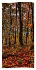 Autumn On The Ice Age Trail Beach Towel