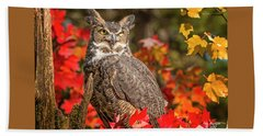Autumn Owl Beach Sheet