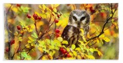 Autumn Owl Beach Towel
