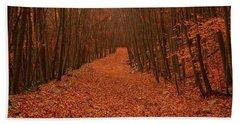 Autumn Passage Beach Sheet by Raymond Salani III