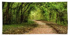 Beach Towel featuring the photograph Autumn Path by Nick Bywater