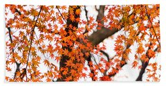 Autumn Red Leaves On A Tree   Beach Towel